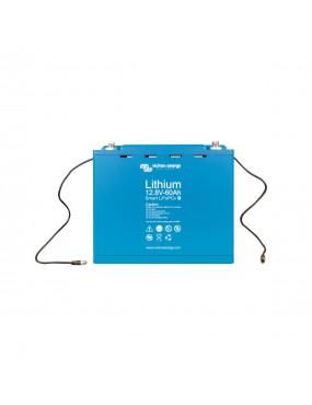 LiFePO4 Battery 12,8V/60Ah...